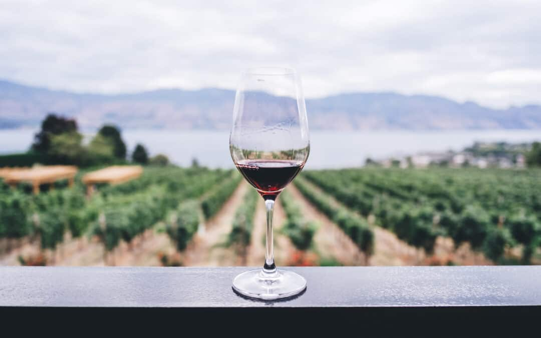 7 Wine Tours To Experience Once A Lifetime (Guest Post by Rebecca Siggers)